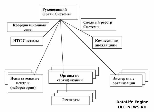 Организационная структура »